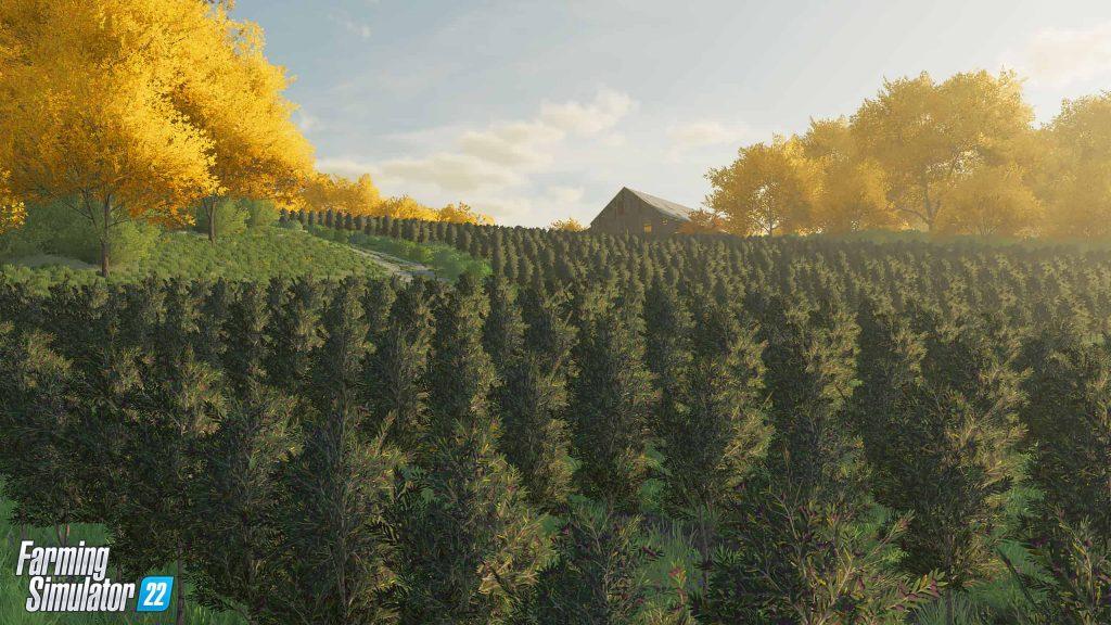 Premier aperçu des nouvelles cultures dans Farming Simulator 22